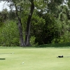Charity Golf 4